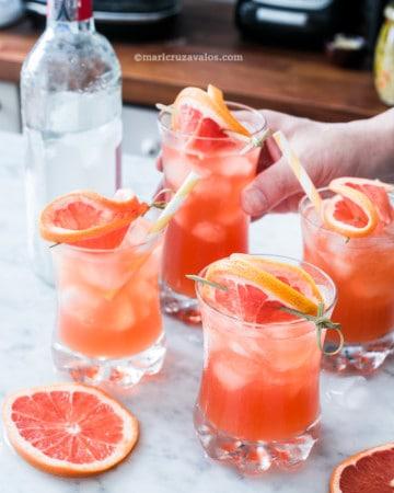 gin con toronja