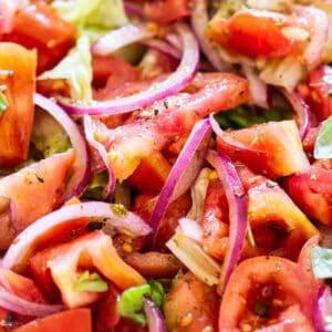 Italian tomato salad close-up