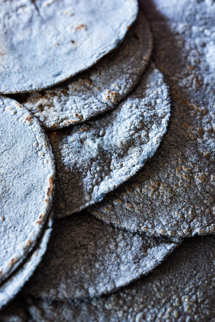 Closeup on blue corn tortilla.